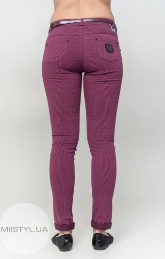 Брюки Esparanto 4532 пурпурно/бордовые