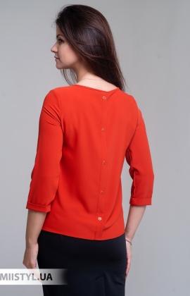 Блуза Pretty Lolita 12864 Терракотовый