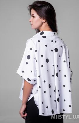 Блуза Timiami T10720 Белый/Черный/Горох