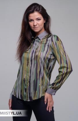 Блуза SHN 4616-725 Зеленый/Черный/Лапка